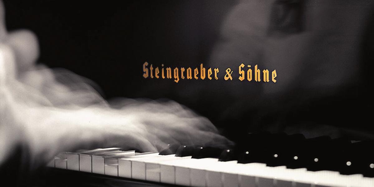 Steingraeber fallborad Tastenklappe